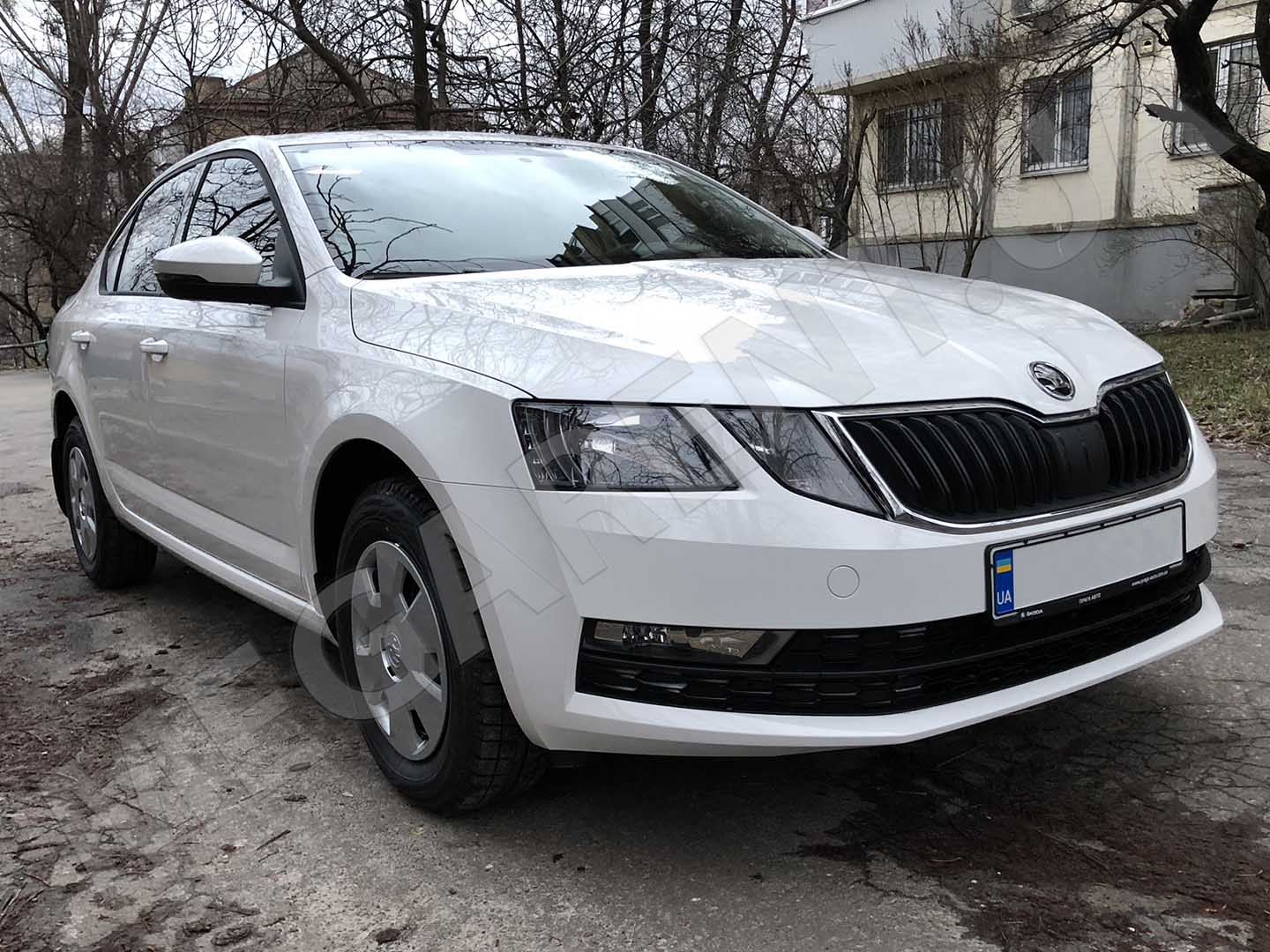 Car rental Skoda Octavia A7 NEW 2017 in Kyiv - photo 3